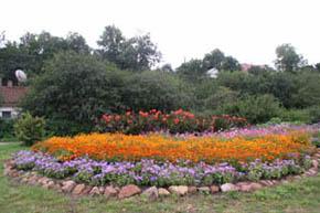 курсы ландшафтного дизайна, цветники