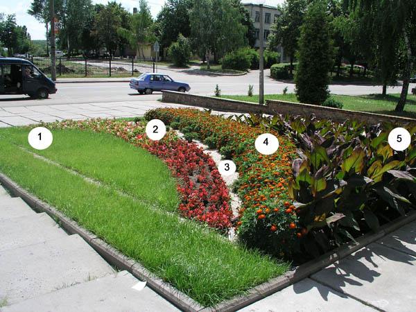 курсы ландшафтного дизайна, курсы садовода